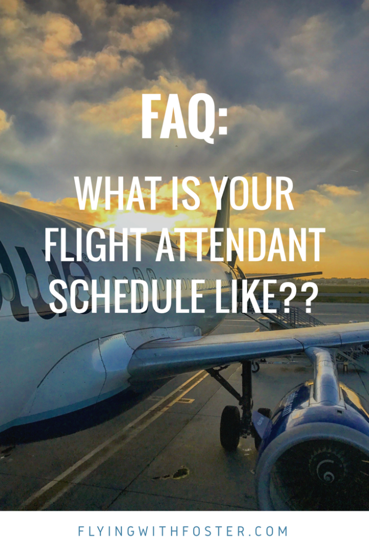 FAQ: What is your schedule like??