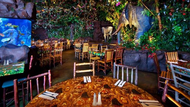 rainforest-cafe-animal-kingdom-00.jpg